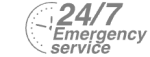 24/7 Emergency Service Pest Control in Walthamstow, E17. Call Now! 020 8166 9746